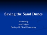 Treasures Vocabulary Power Point for Saving the Sand Dunes