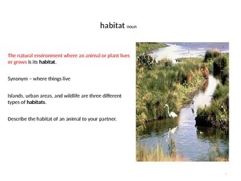 Treasures Whose Habitat is it vocabulary PowerPoint