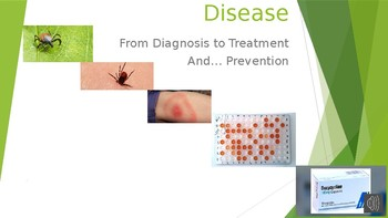 Treatment and Prevention of Lyme disease
