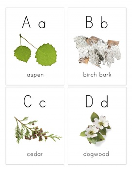 Tree Alphabet- Naturalist Montessori Alphabet