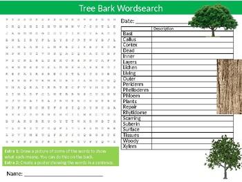 Tree Bark Wordsearch Sheet Starter Activity Keywords Biology Botany