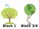 Tree Designs for Classroom Organization