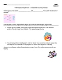 Tree Diagram & Fundamental Counting Principal