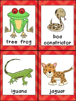 Tree Frog, What Do You See Emergent Reader and Pocket Chart Rain Forests