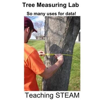 Tree Measuring Lab