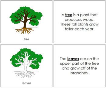 Tree Nomenclature Book