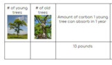 Tree Observation & Calculation of CO2 absorption