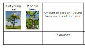 Tree Observation & Calculation of CO2 absorption #inthistogether