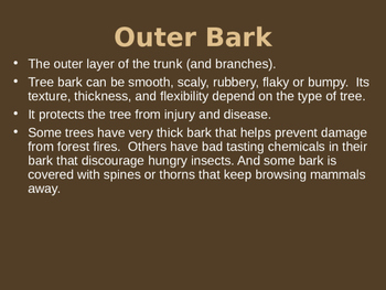 Tree Parts and How They Work Powerpoint