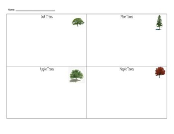 Tree Research Project Graphic Organizer
