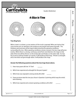 Tree Ring Timeline | Theme: Plants | Scripted Afterschool Activity