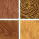 Tree Rings Digital Paper, Wood Texture Pack, Tree Slices, Wood Digital Paper