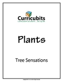 Tree Sensations | Theme: Plants | Scripted Afterschool Activity