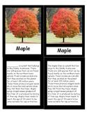 Tree Species Cards