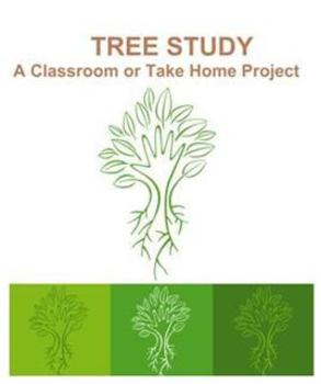 Tree Study: A Classroom or Take Home Project
