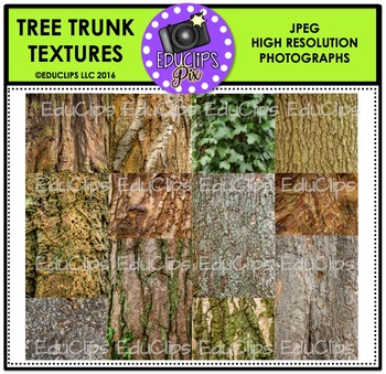 Tree Trunk Textures Photo Set {Educlips}
