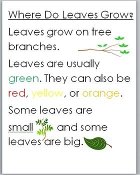 Tree Unit Notes