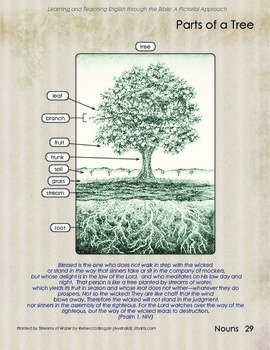 Tree Vocabulary and Psalm 1
