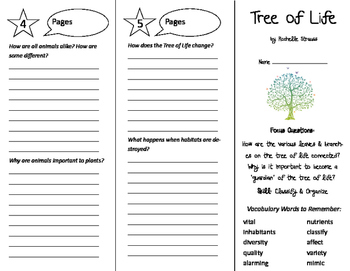 Tree of Life Trifold - Imagine It 6th Grade Unit 3 Week 1