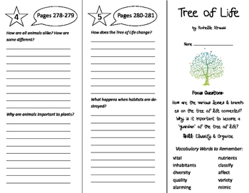 Tree of Life Trifold - Imagine It 6th Grade Unit 3 Week 1