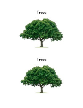 Trees Emergent reader and activity sheet