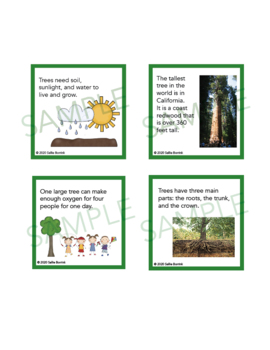 Trees Unit Activity - Fun Fact Cards for Games, Bulletin Board