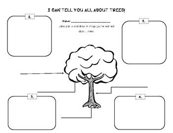 Trees Graphic Organizer