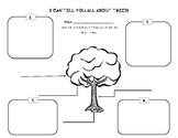 Trees Graphic Organizer