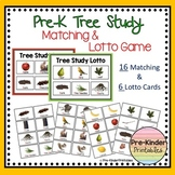 Trees Study: Matching Game and Lotto (Pre-K, Kindergarten Tree or Plant Unit)
