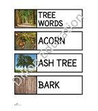 Trees Unit