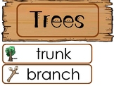 Trees Word Wall Weekly Theme Posters.