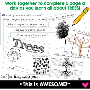 Trees ... a science journal w/ links to video clips ... can go w/ Foss
