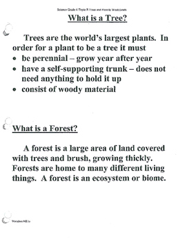 Trees and Forests Science- Lessons #1-5