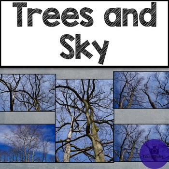 Trees and Sky Stock Photos