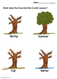 Trees in the Four Seasons Activity