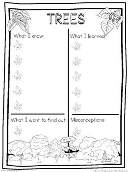 Trees schema  worksheet