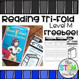 Reading Comprehension Tri-Fold FREEBEE - Level M
