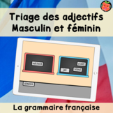 Triage de genre masculin et féminin   Cartes Boom   La grammaire française
