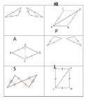 Triangle Congruence Card Sort