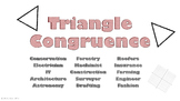 Triangle Congruence Career Poster