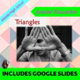 Triangles:  Geometry Unit for Special Ed with lesson plans