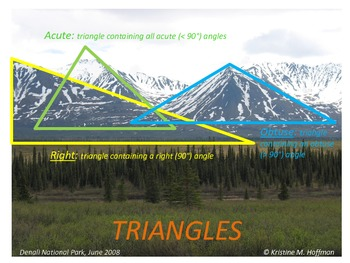 """""""Triangles"""" in Denali National Park (Math Poster)"""