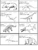 Triassic Period Animal Classification Dinosaurs