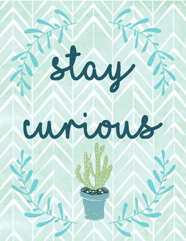 Tribal Cactus Motivational Classroom Posters