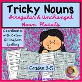 Irregular Nouns: Tricky Nouns w/10 Activities to Match,Sor