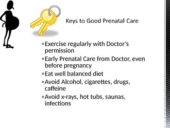 Trimesters of Pregnancy Power Point