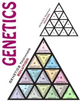 Triominos Puzzle ~GENETICS REVIEW~ Biology