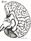 Triune Brain Hat