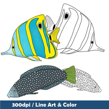 Tropcial & Exotic Fish Clip Art - 20 images in color and Line Art