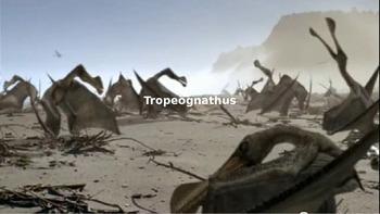 Tropeognathus